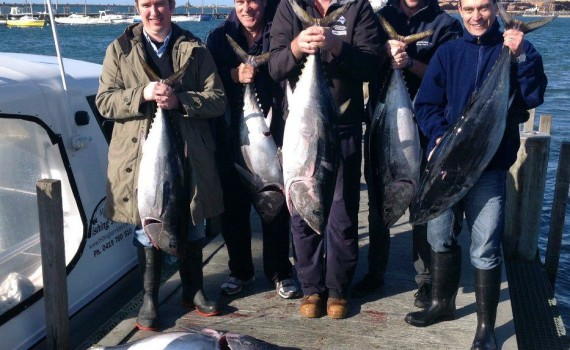 Bluefin Tuna caught on one of our Portland Charters